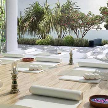 Serene indoor/outdoor yoga garden